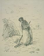 Woman Raking Hay