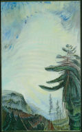 Fir Tree and Sky
