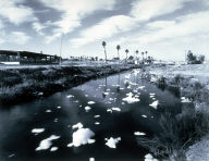 Polluted New River, Calexico, California, from the California Toxics Project