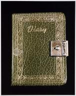 untitled from Roberta's Internal Transformations: Language from Roberta [Roberta's diary]
