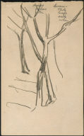 [Study for Bridle Path, Drawing for painting Bridle Path]