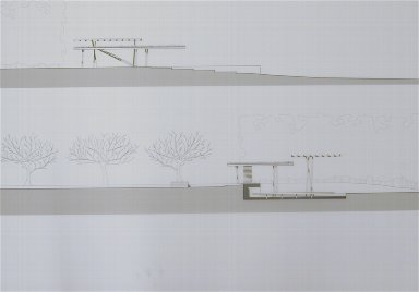 Rural Site: Cross Sections