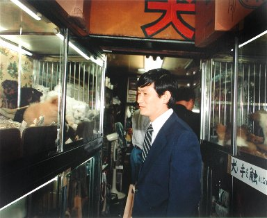 A Businessman in a Pet Store, Shinjuku, Tokyo, from the portfolio Map of the East