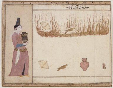A Man Standing Beside a Fire That Surrounds a Butterfly and a Bird
