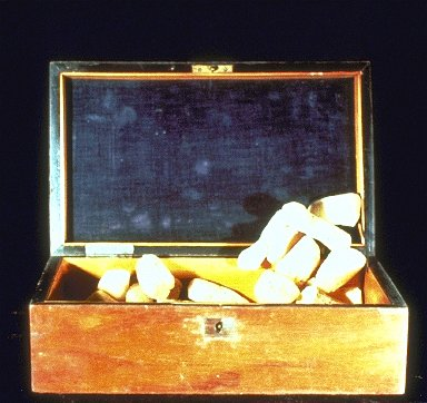 Untitled (Chest with Sponges)