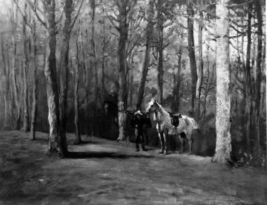 Pine Woods, Magnolia
