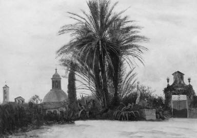 Palm Trees with a Domed Church
