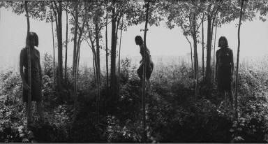 Small Woods Where I Met Myself (1st Version)