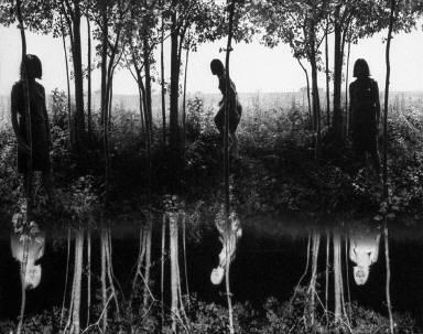 Small Woods Where I Met Myself (2nd Version)