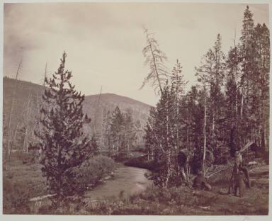 Upper Bear River (Mungera's Squaw)