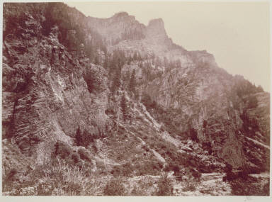 American Fork Canon, Wahsatch