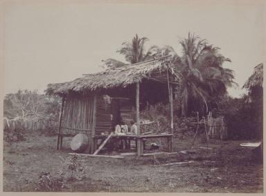 Native Hut, Turbo