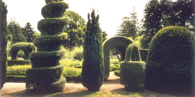 Geometric Topiary, Green Animals, Portsmouth, Rhode Island