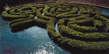 Azalea Maze, J. Paul Getty Center, Los Angeles, California