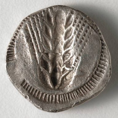 Stater: Ear of Corn incuse [stamped in] (reverse)