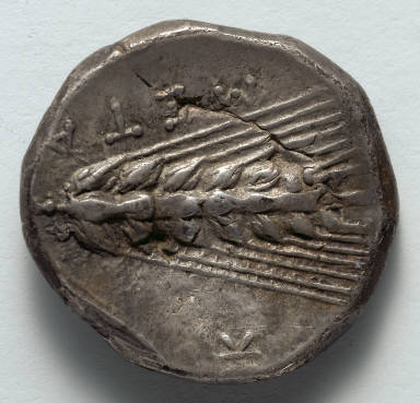 Stater: Ear of Corn (reverse)