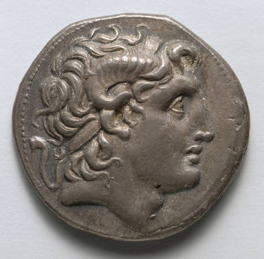 Tetradrachm: Alexander the Great (obverse)