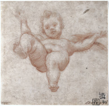 [Flying Cupid, Study for an Angel]