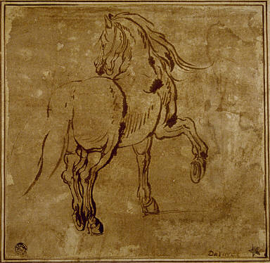 [Horse, Seen Three-Quarters From the Rear, Study of a Horse, Horse (foreshortened)]