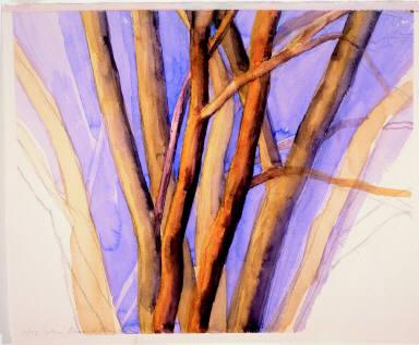 The Elm Tree 11/93