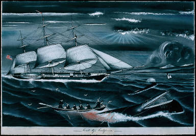 Whaling off the coast of California