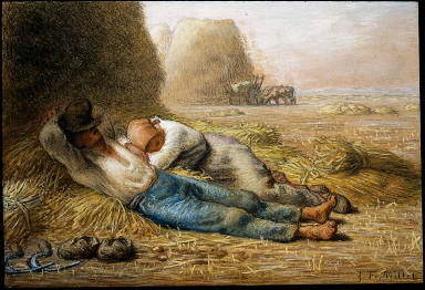 Noonday Rest