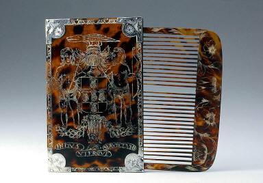 Comb case