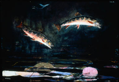 Leaping Trout