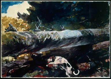 Hunting Dog among Dead Trees