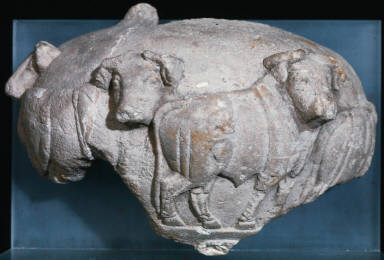 Relief cup with bulls