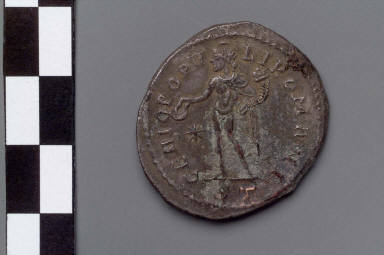 Follis with bust of Constantius I