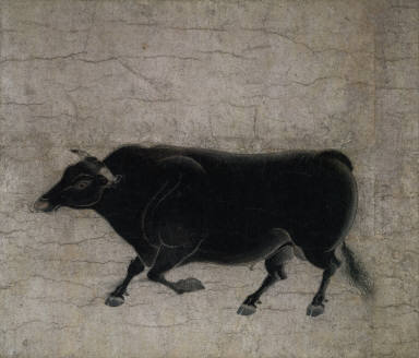 One of the Ten Fast Bulls