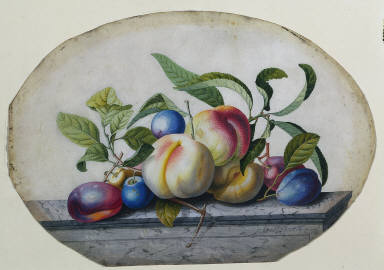 Fruit Arrangement: Peaches and Plumbs on a Slab of Marble