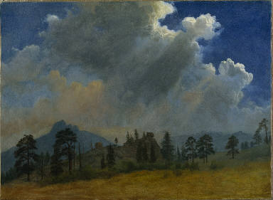 Fir Trees and Storm Clouds