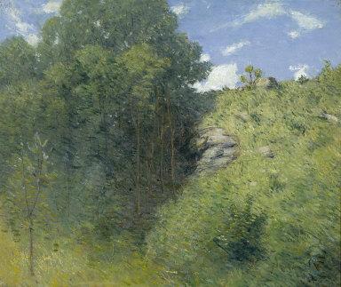 Ravine near Branchville