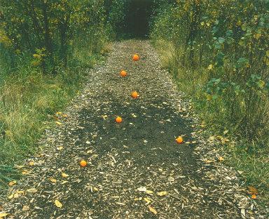 Six Oranges, Delaware Park, Buffalo, New York