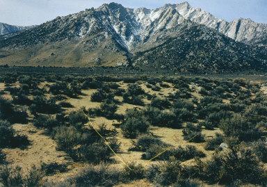 Mount Whitney V, Alabama Hills, California