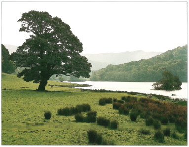 Rydal Water from Nab Cottage, Lake District, England