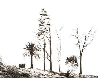 Edge of San Timoteo Canyon, Redlands, California