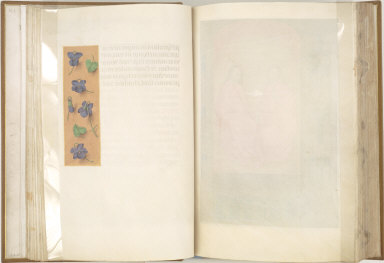 Hours of Queen Isabella the Catholic, Queen of Spain: Short Border with Strewn Violets, fol. 16 (verso)