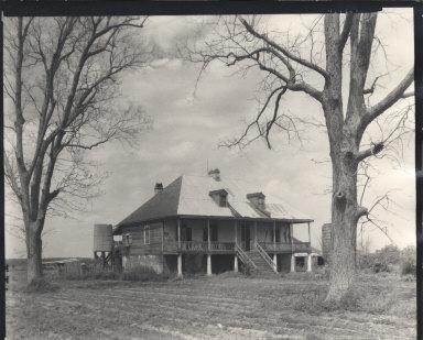 Elmwood Plantation