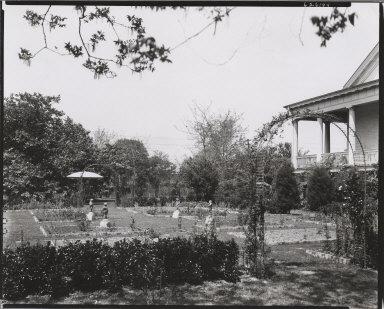 Stauffer Plantation