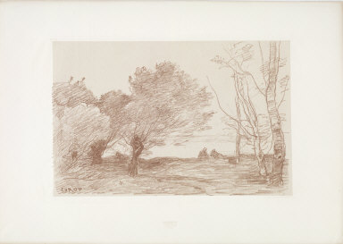 [Willows and Poplars, Saules et peupliers blancs]