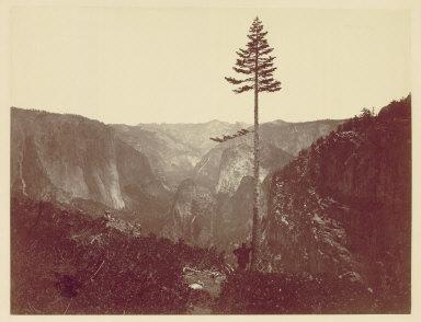 Yosemite Valley from Mariposa Trail