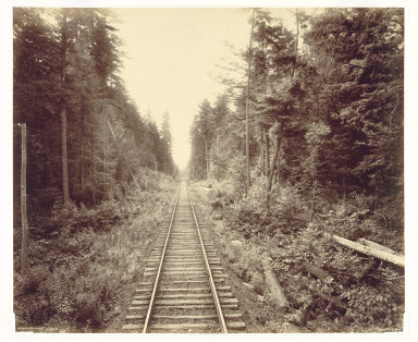 Hemlock Forest, Lehigh Valley Railroad