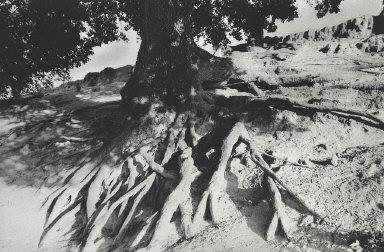 Roots-Montjustin, Alpes de Haute Provence