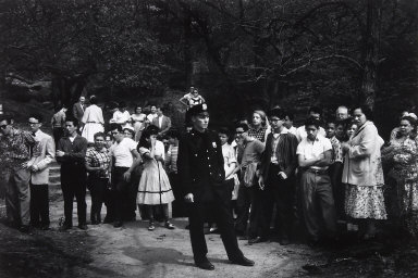 Crowd, Central Park, Watching Failed Resuscitation of Drowning Victim