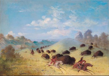Comanche Indians Chasing Buffalo with Lances and Bows