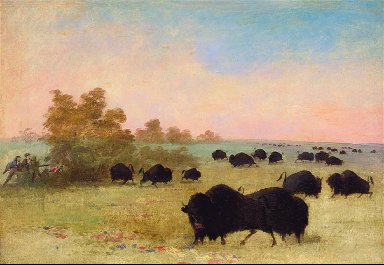 Catlin and Party Stalking Buffalo, Upper Missouri
