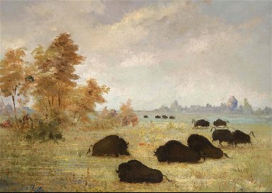 Stalking Buffalo, Arkansas
